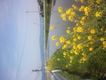 ホクト 塾長のブログ-NCM_0513.JPG